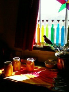 Rainbow jars peach jam 2010-1