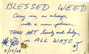 BLESSED WEED prayer poem 2008 feb15
